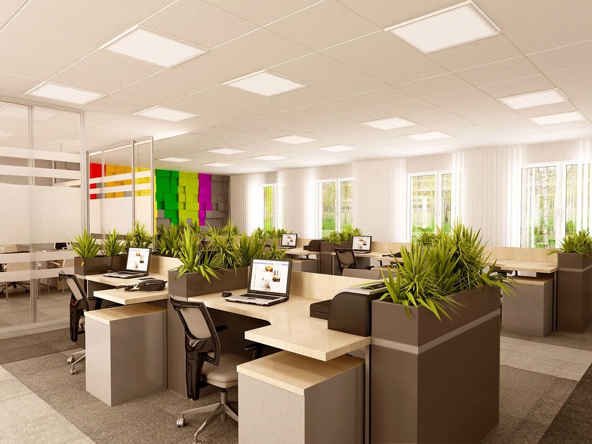 Biura w Zielonej Górze 1